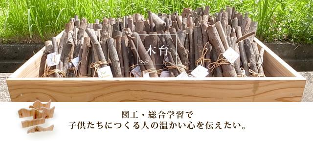 富山県産材 杉や里山の木の枝をお届け 木育 図画工作用材料